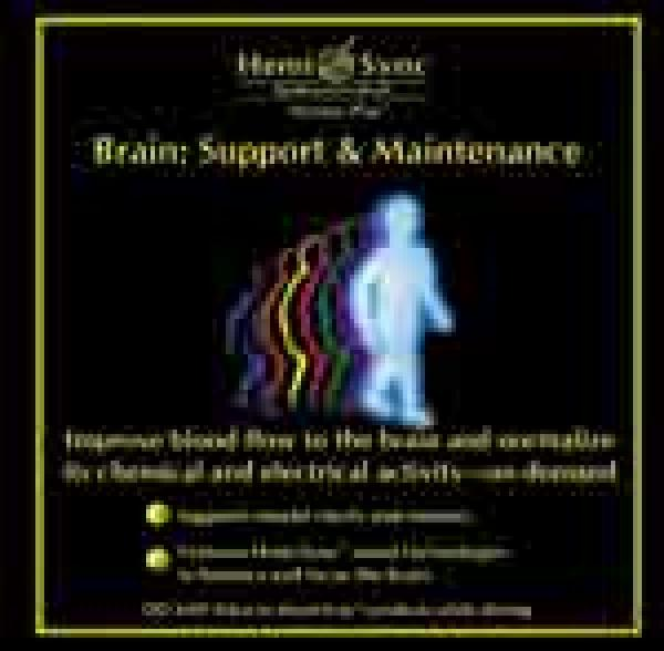Brain: Support & Maintenance